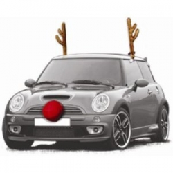 Where to buy reindeer antlers and nose for car? - www ...